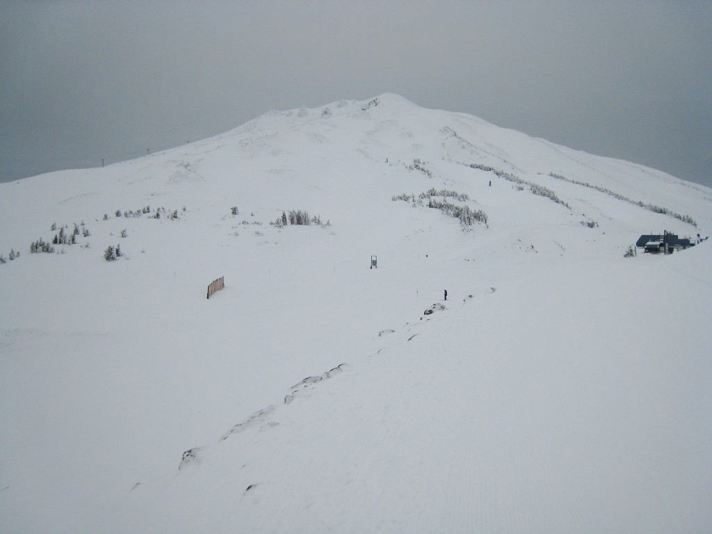 Mt Bachelor upper mountain, January 2010