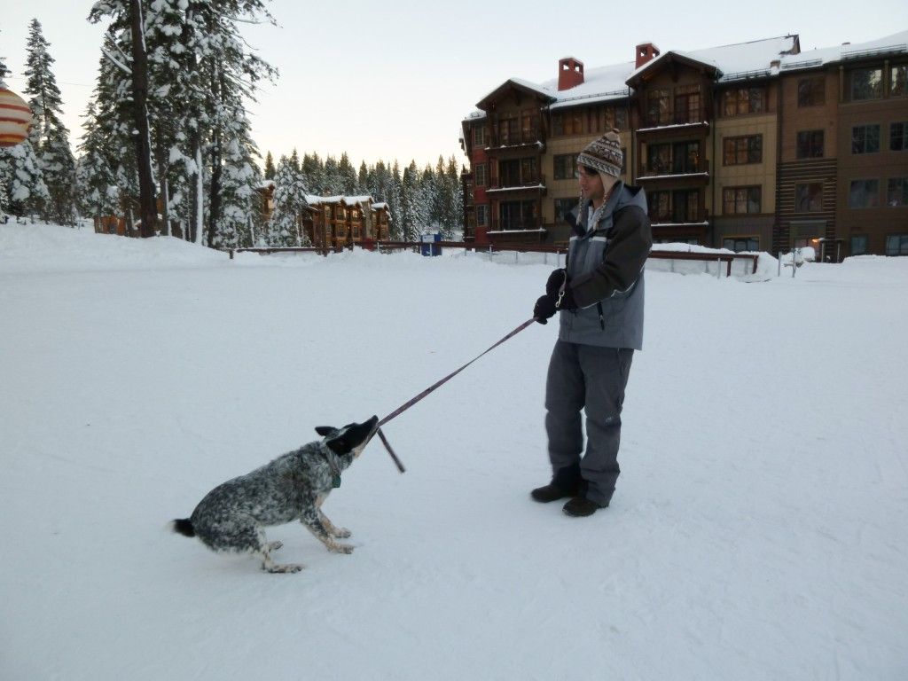 Northstar Village with Pippin, January 2011
