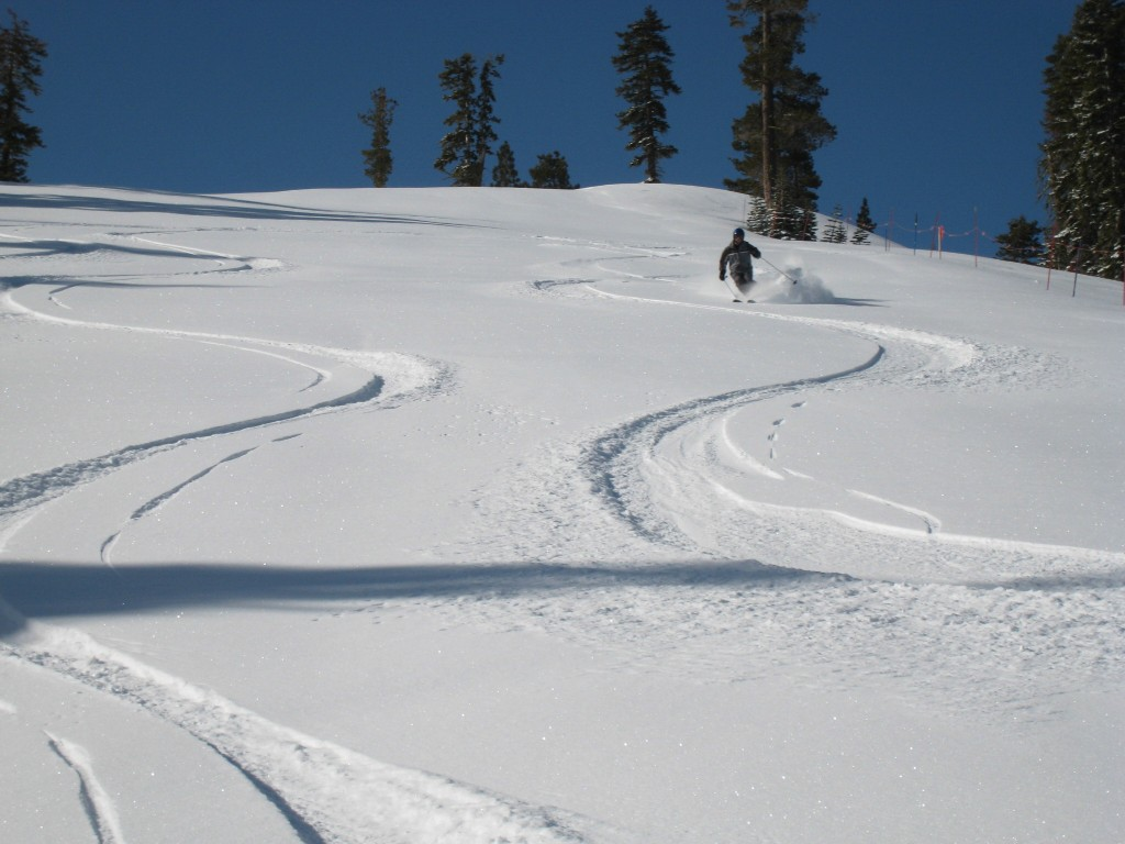 Squaw Creek powder, March 2010