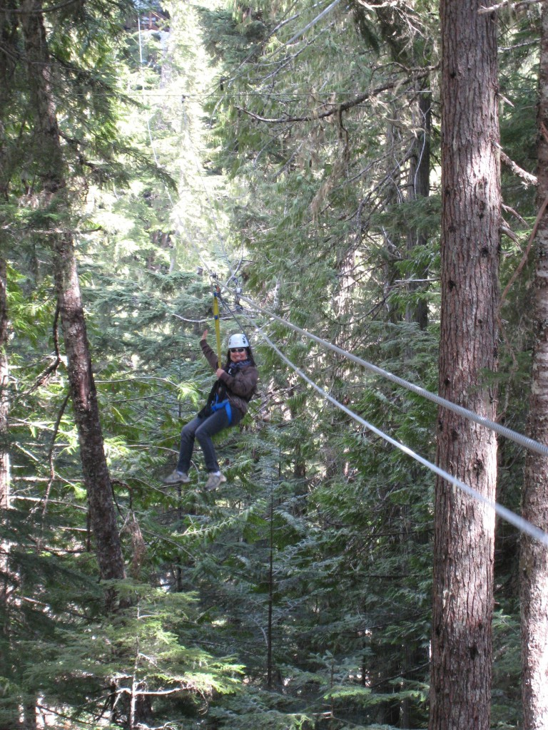 Zip line in the valley