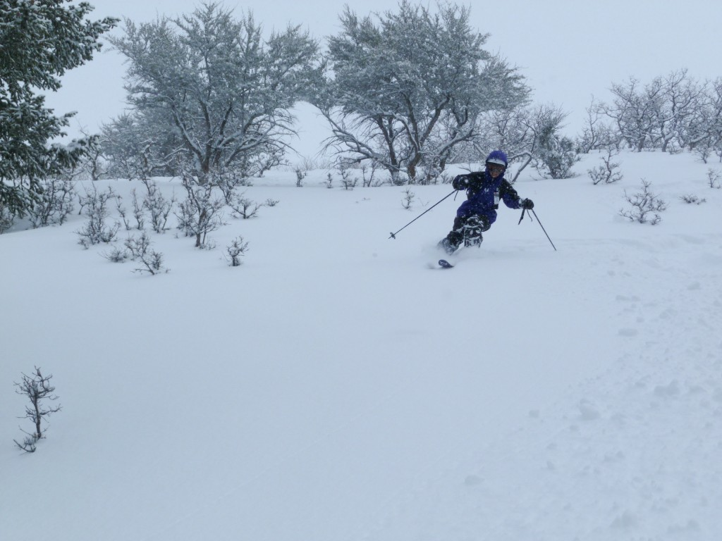 Powder skiing in the Iron Mountain Area, The Canyons, February 2011