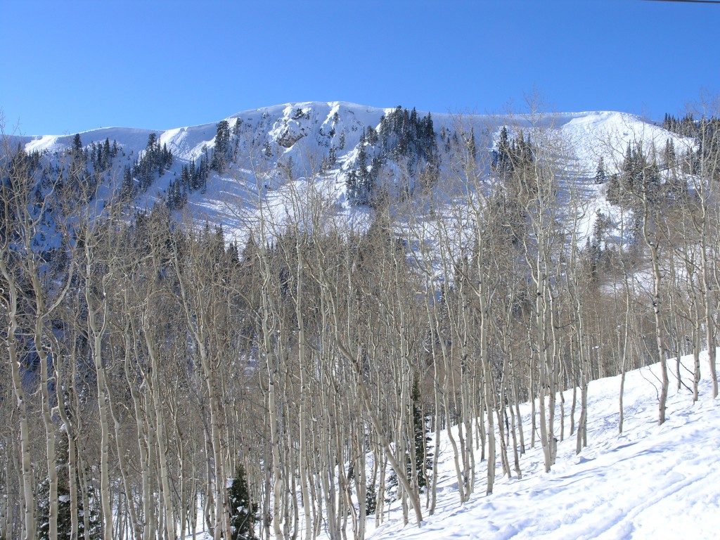 Daly Chutes at Deer Valley