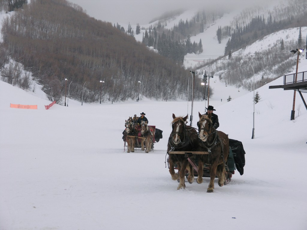 Evening sleigh ride - February 2005