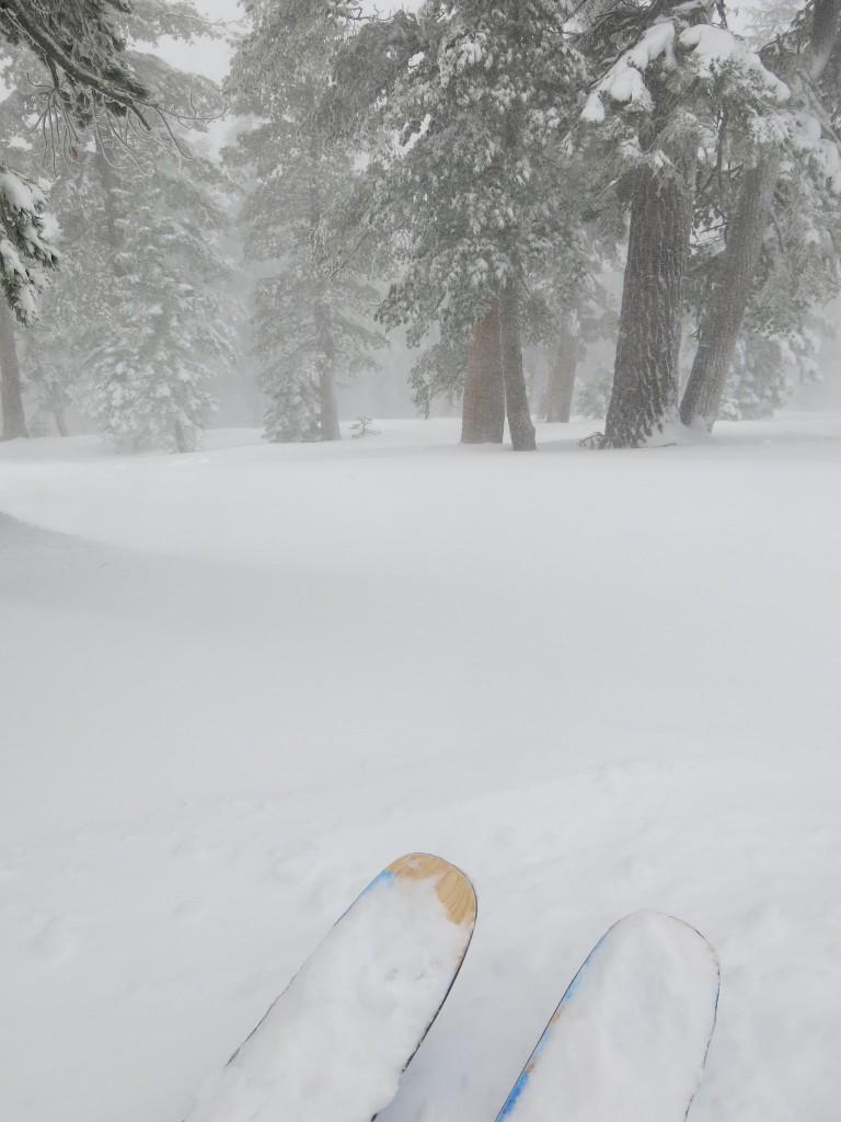 Heavenly tree skiing Dec 21, 2015