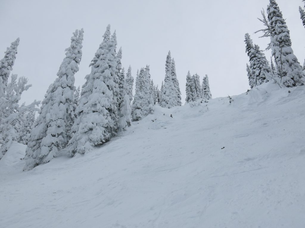 Double-black at Brundage, December 2015