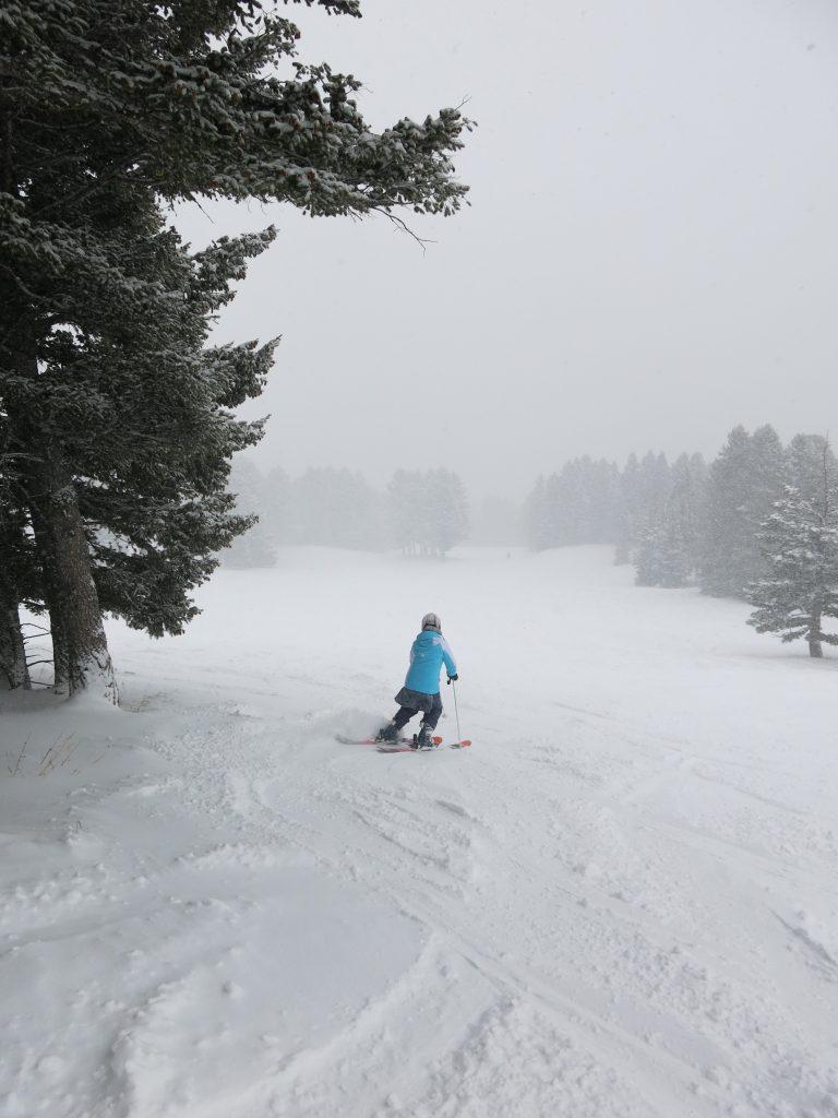 Nice snow off Pierre's Knob lift at Bridger Bowl, December 2016