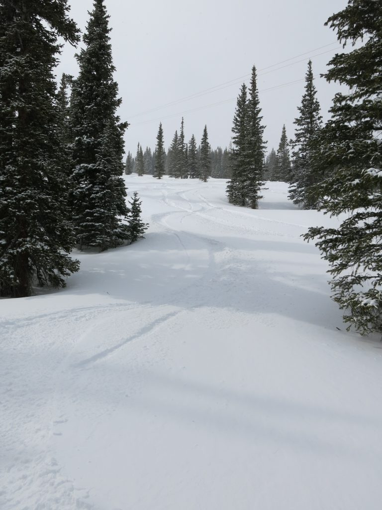 Powder at Snowmass, March 2016