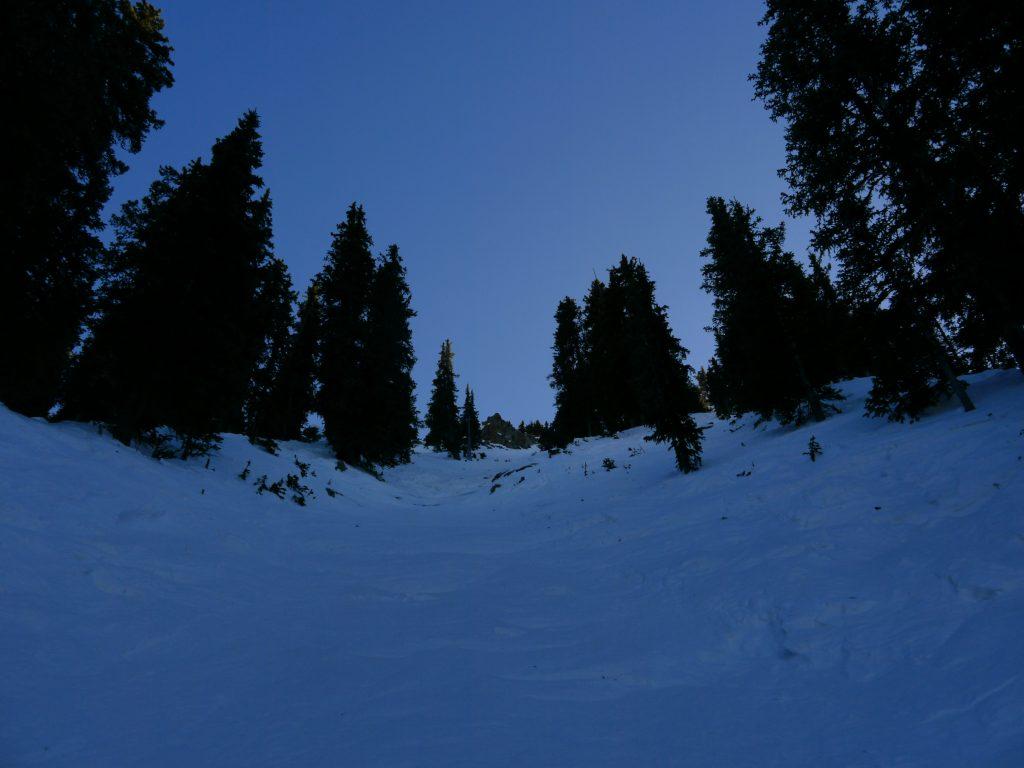 Treskow at Taos, December 2011