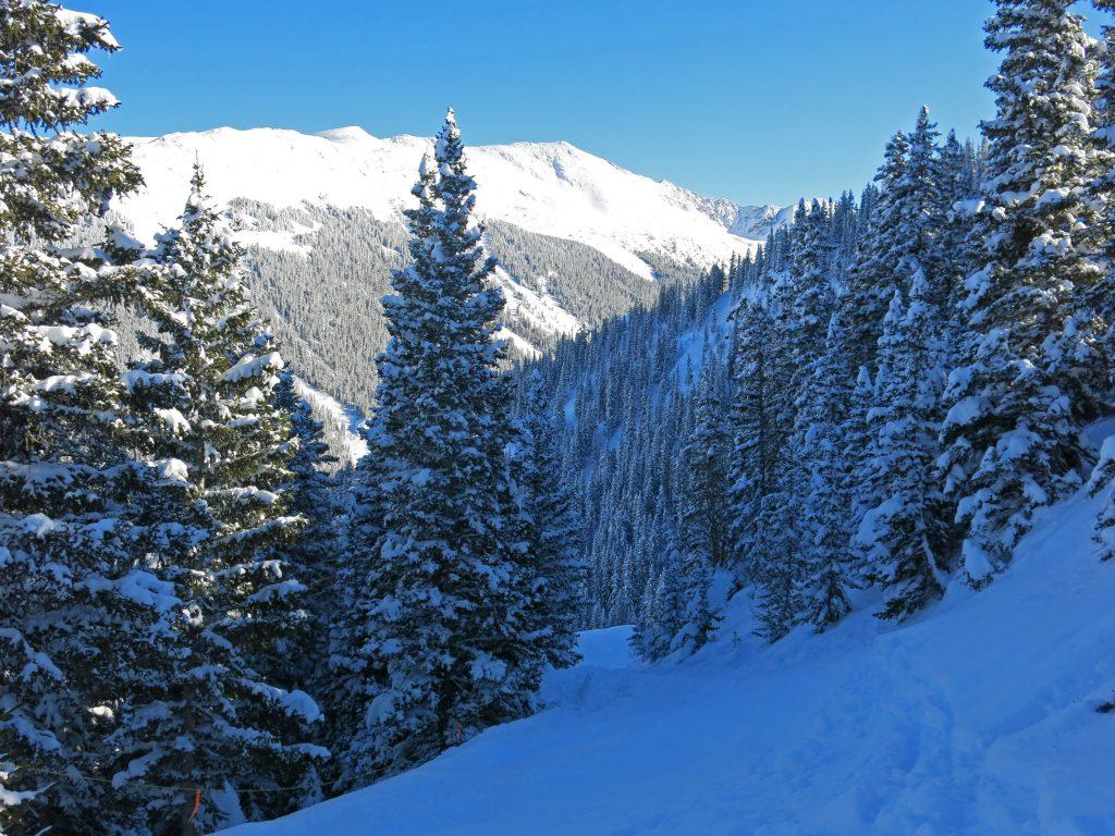 Top of Longhorn at Taos, January 2015