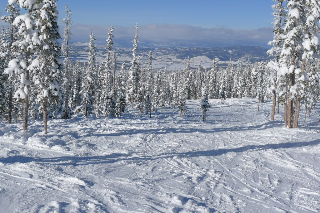 Lots of tree skiing at Winter Park, December 2014