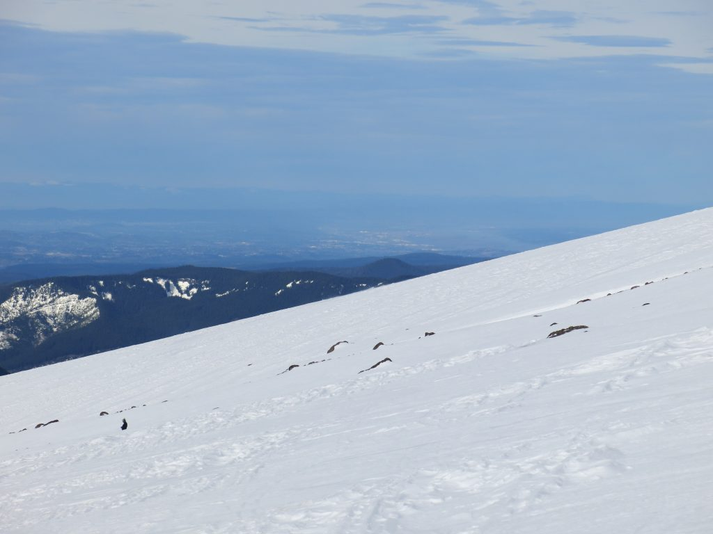 View of Portland from Timberline showing average slope of the upper mountain, February 2017