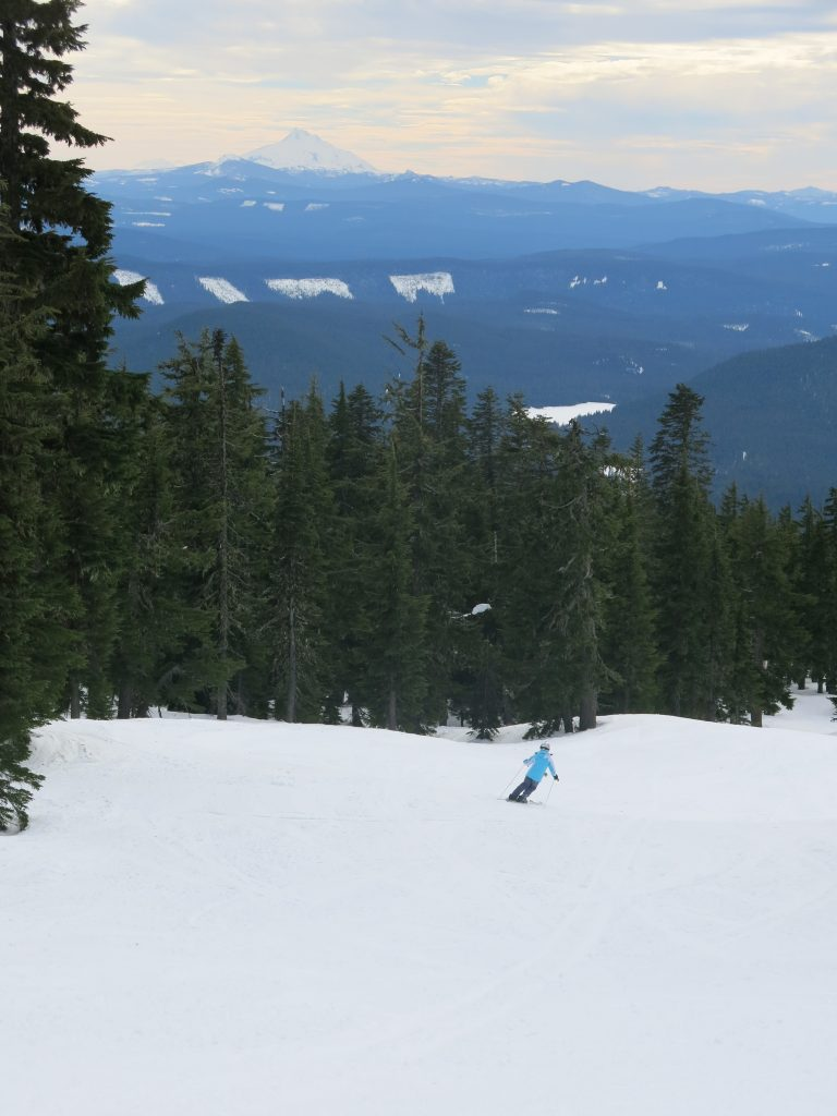 Kruzer at Timberline with Mt. Adams in the distance, February 2017
