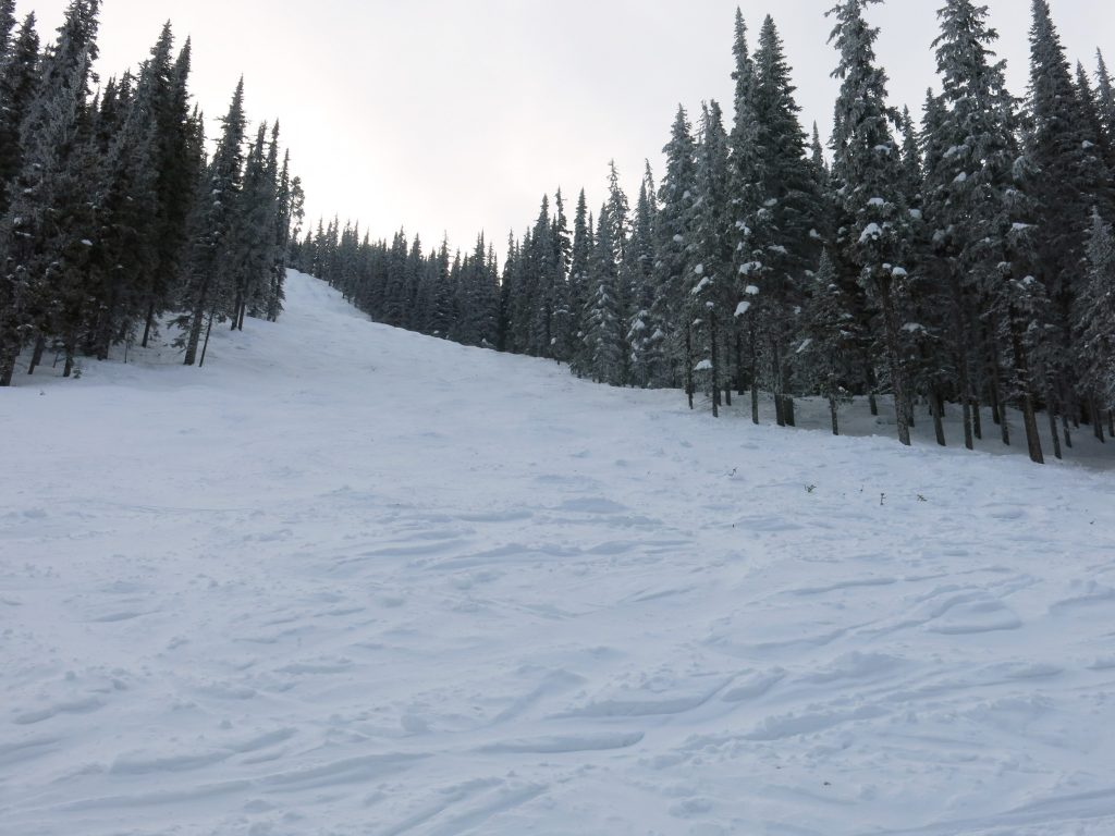 Steeper terrain on skier's right of Beaconsfield Mountain at Apex Mountain, February 2017