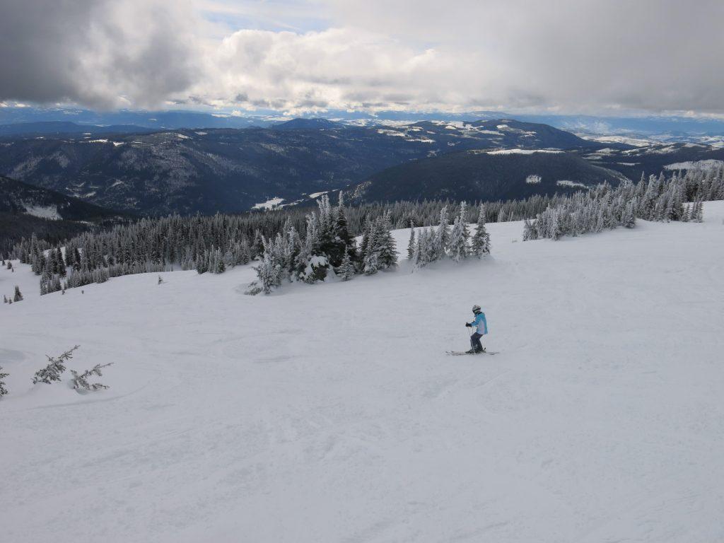 T-Bar terrain at Sun Peaks, February 2017