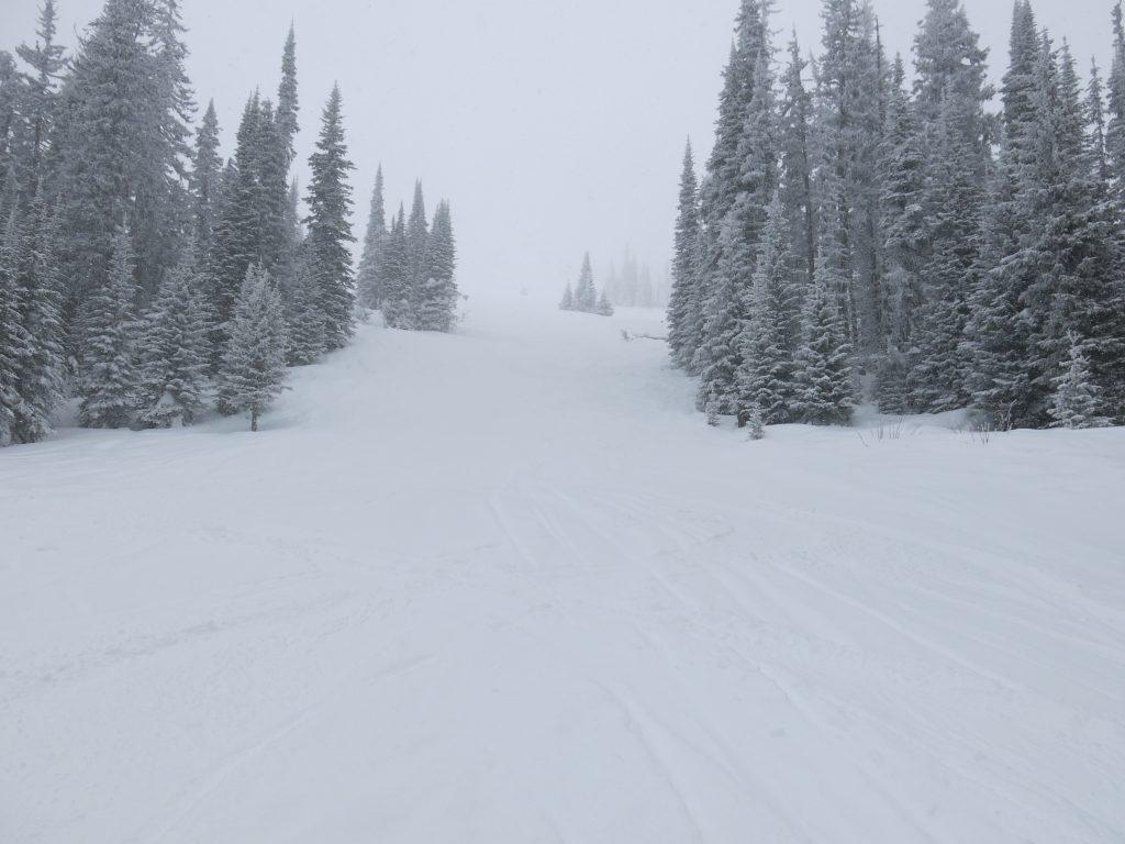 Crystal Chair terrain at Sun Peaks, February 2017
