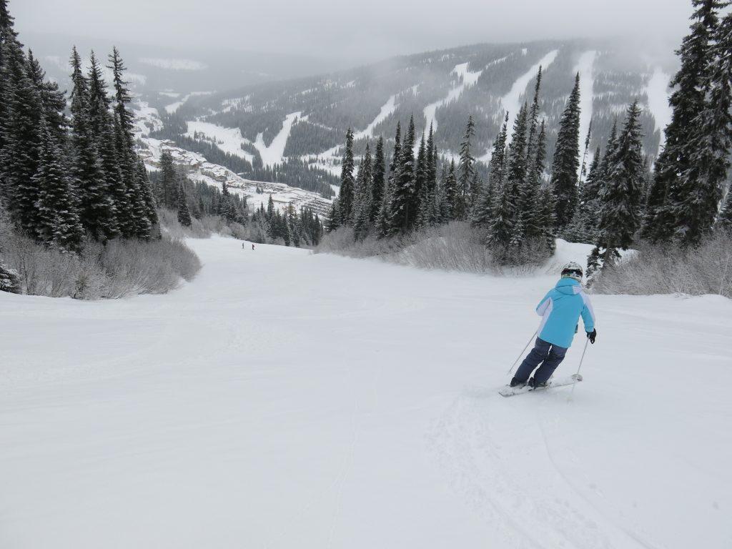Nice intermediate terrain at Sun Peaks, February 2017