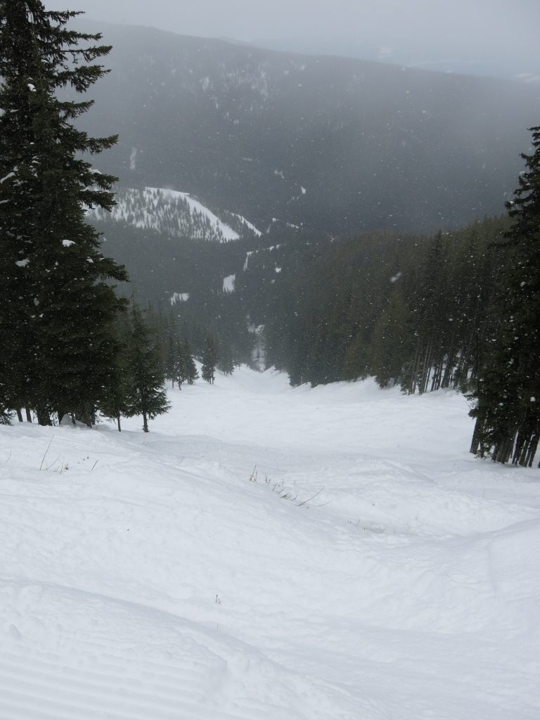 Rusty Whistle double-black terrain at Silver Star, February 2017