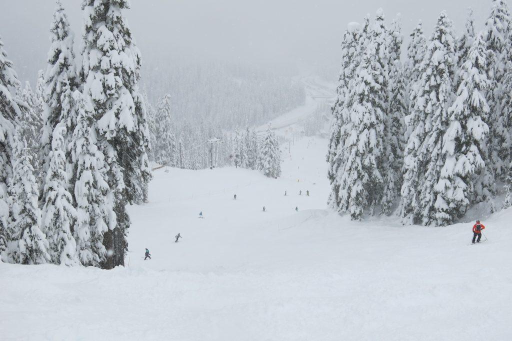 Frontside terrain at Stevens Pass, December 2017