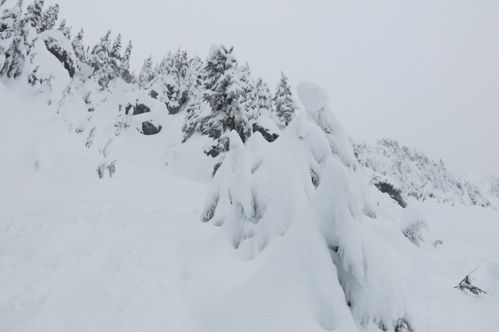 "This is marked as open terrain with ""No easy way down"" at Stevens Pass, December 2017"