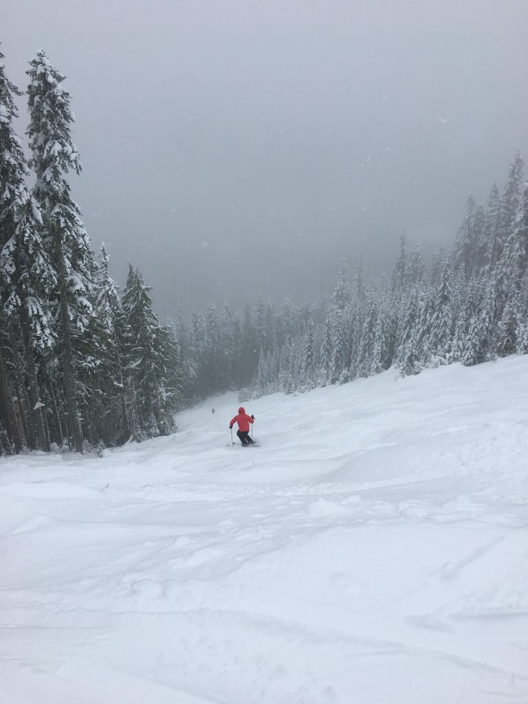 """""""Paradise Cliff"""" at White Pass, December 2017"""