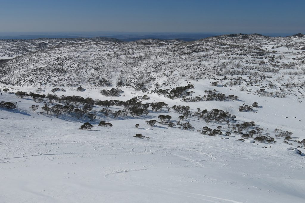 Mt. Perisher soft snow off the Eyre T-bar