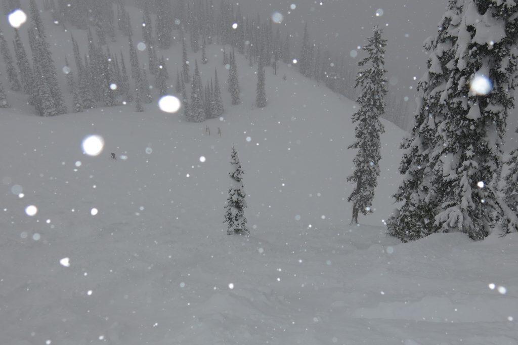 Snow falling at Fernie, February 2018