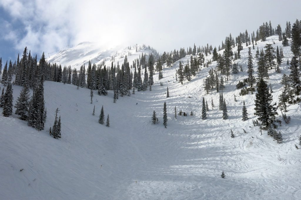 Lower Currie Bowl at Fernie, February 2018