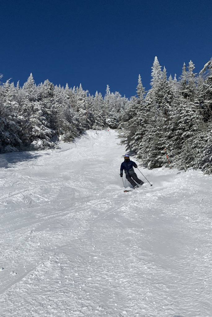 Smugglers at Stowe, January 2019