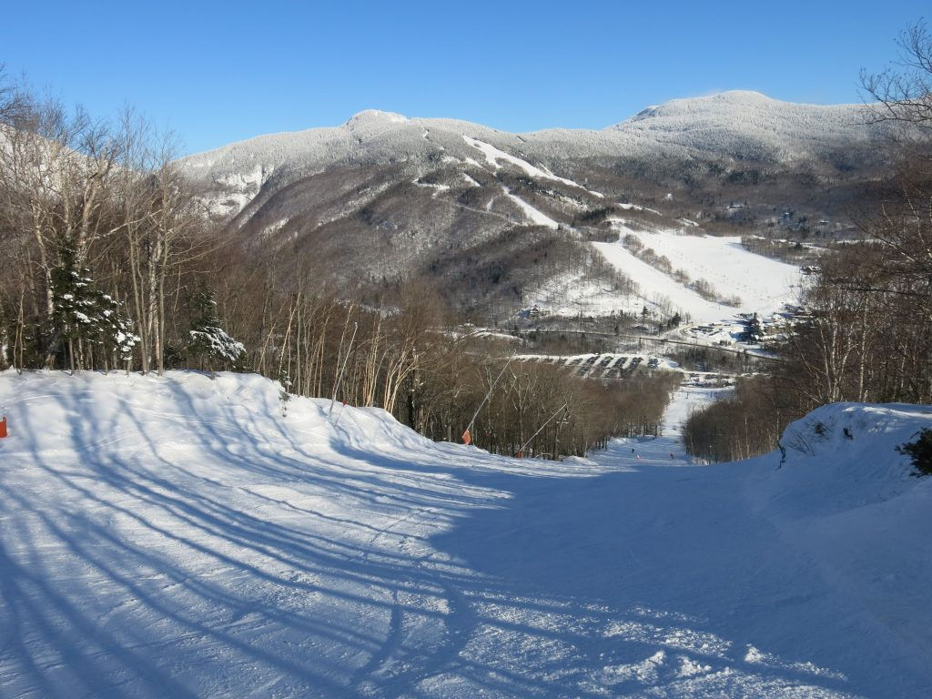 The old T-Bar line at Stowe, January 2019