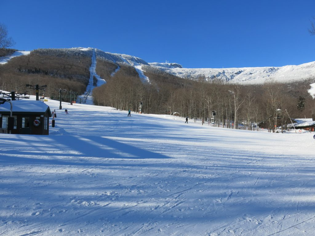 The non-running Lookout Double at Stowe, January 2019