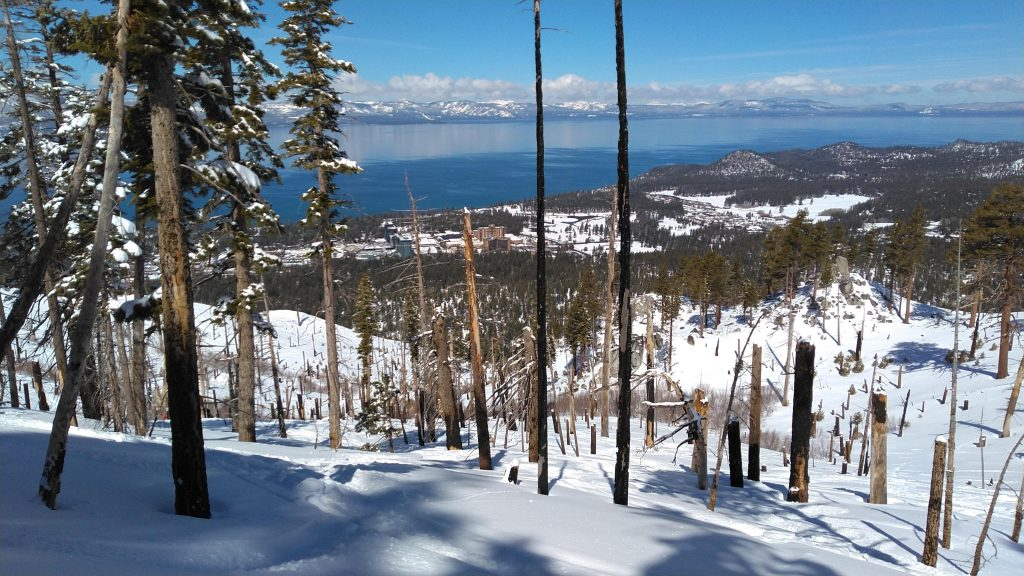 Late March powder run on Firebreak at Heavenly, March 2019