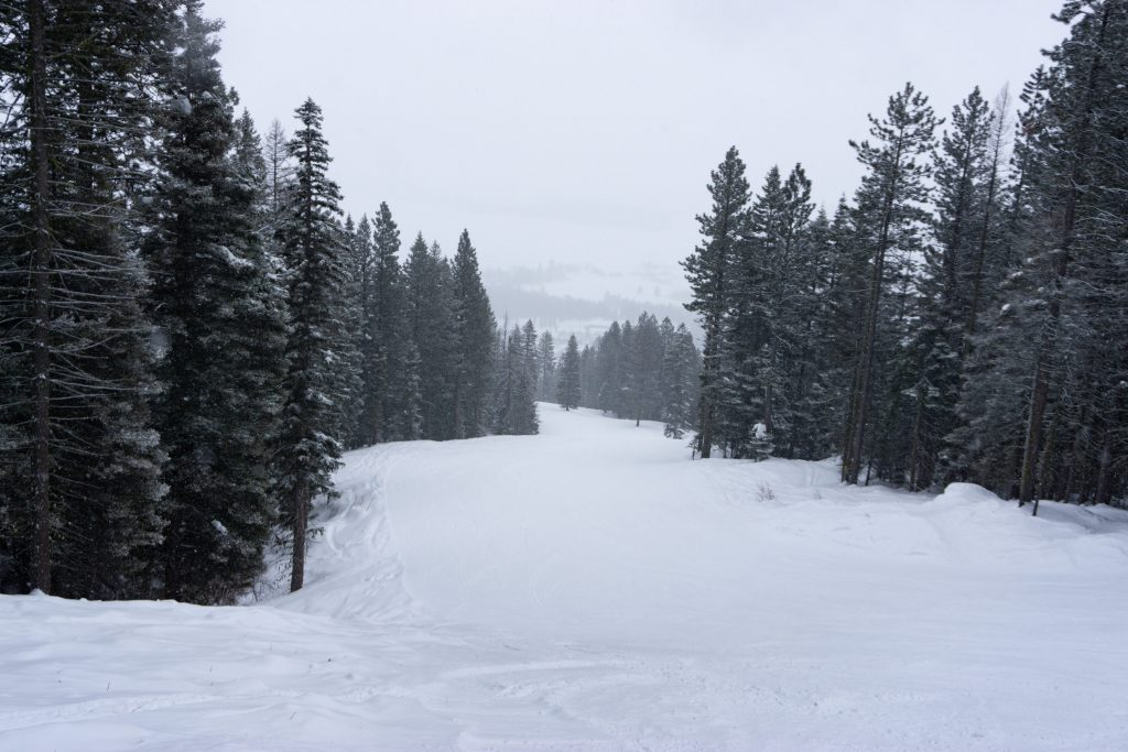 """Bliss"" at Tamarack, February 2020"