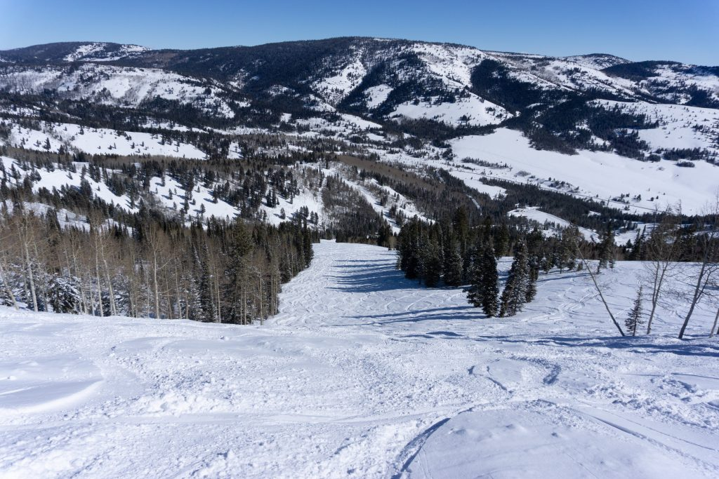 Harry's Dream terrain at Beaver Mountain, February 2020