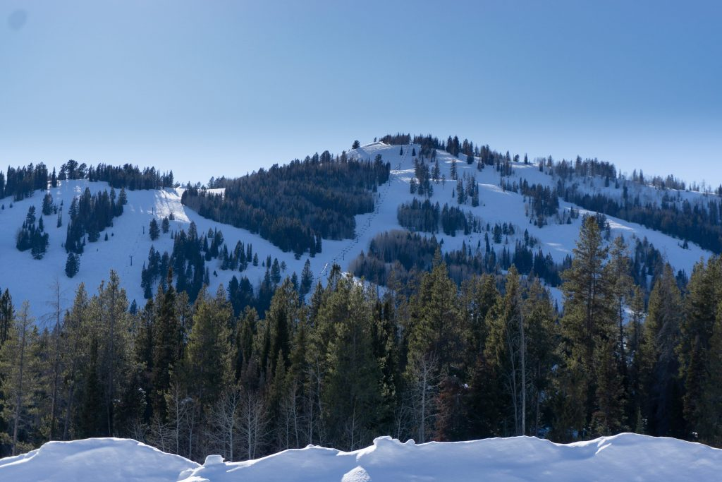 Late afternoon at Beaver Mountain, February 2020