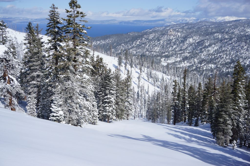 """60"""" of untracked powder on the runs at Heavenly, March 2020"""