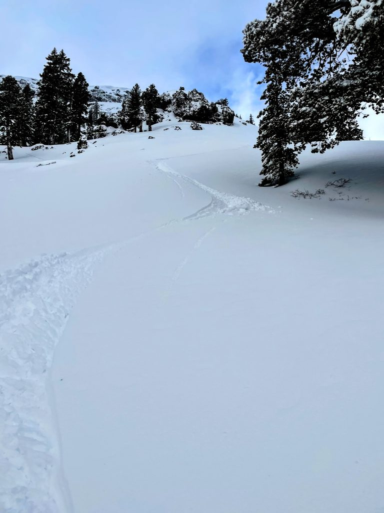 Untracked powder at Kirkwood, March 2021